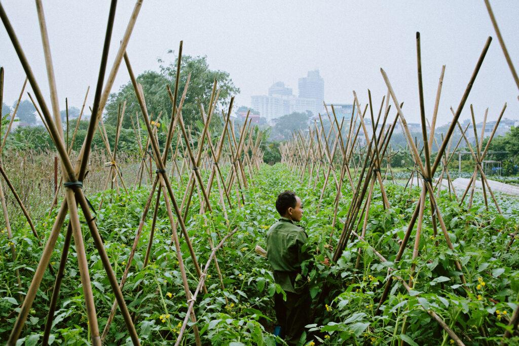 Hanoi, Vietnam, 2020